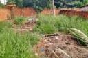 A pedido de moradores, Nenão indica limpeza de três terrenos