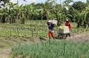 Agricultura familiar, saúde e orientação aos produtores pautam indicações