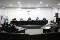 Câmara divulga balanço de atividades legislativas do primeiro semestre de 2020